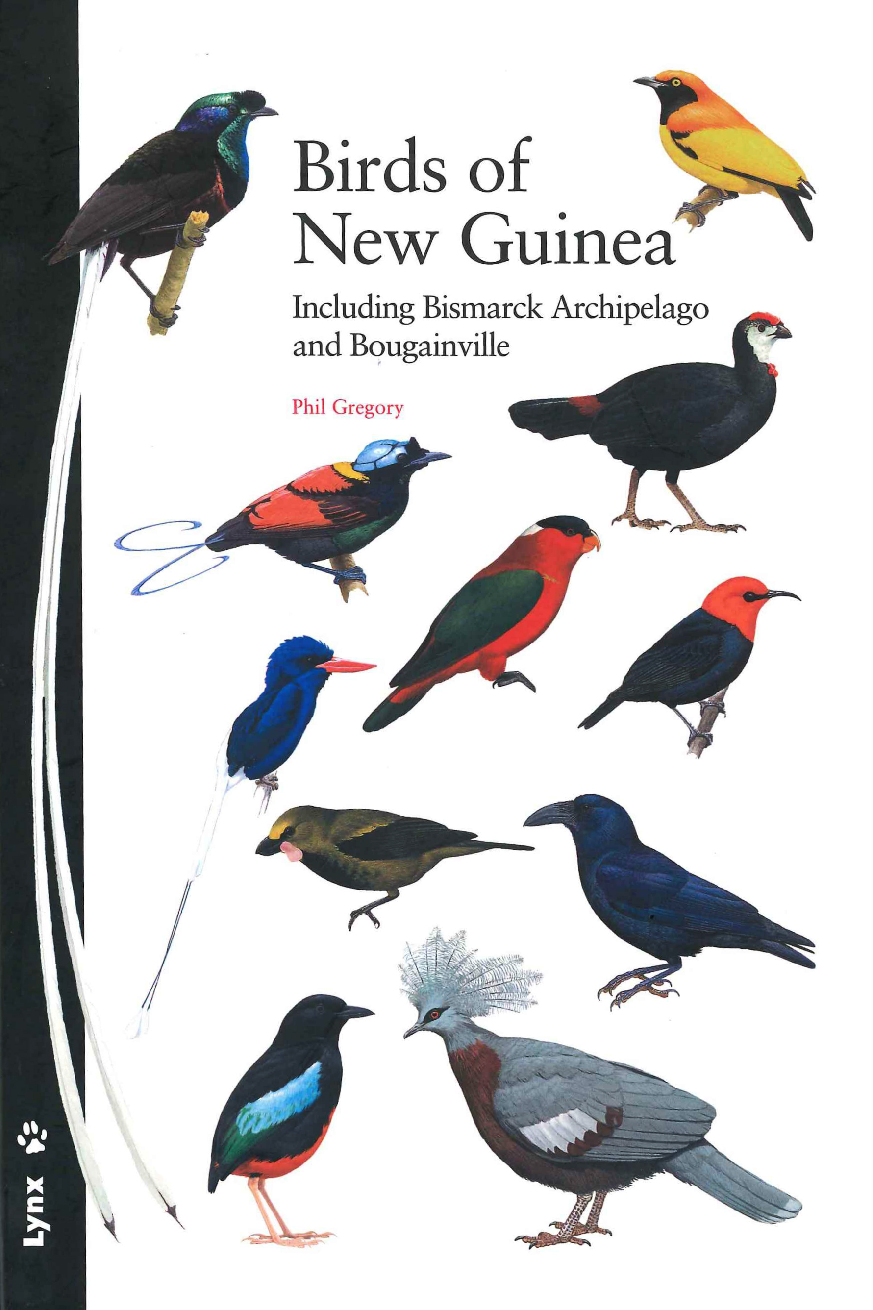 Birds Of New Guinea Including Bismarck Archipelago And Bougainville