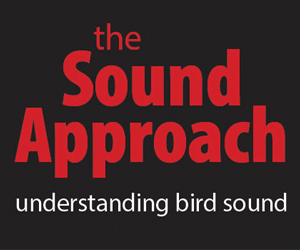 Sound Approach vierkant