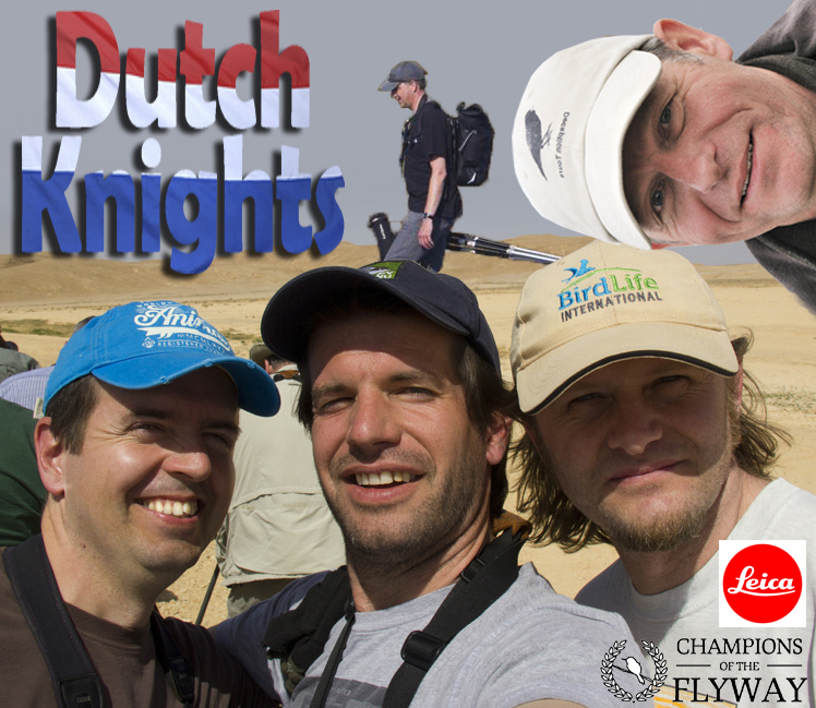 Dutch Knights