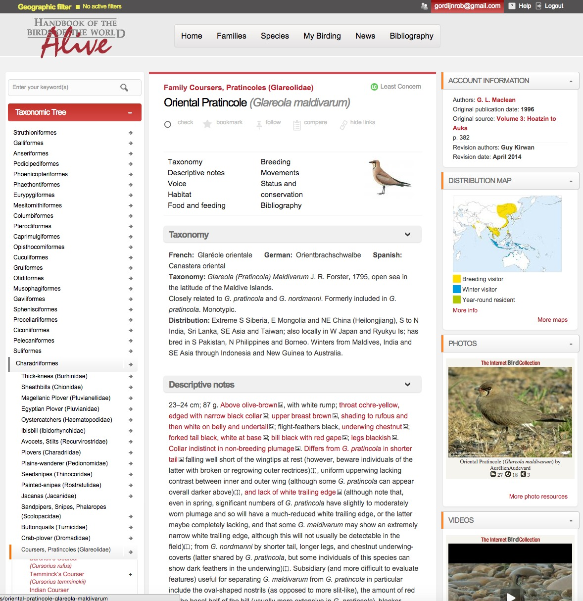 HBW Alive example page