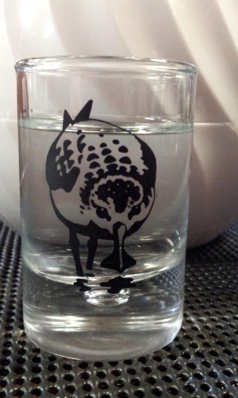 Spoon-billed Sandpiper glass