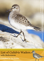 Calidris references
