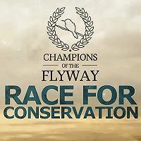 Dutch Birders in de Champions of the Flyway birdrace!