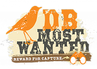 Goudlijster - Most Wanted