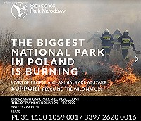 A huge fire in one of the most valuable national parks in Europe