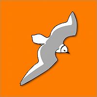 Bericht van het bestuur: DBAlerts Info App en Dutch Bird Alerts