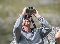 APC Kite Optics - verrekijkers met beeldstabilisatie