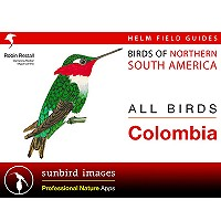 All Birds Colombia