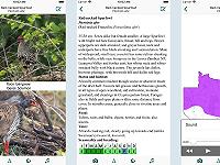 Birds of Zambia app