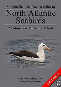 North Atlantic Seabirds - Multimedia Identification Guide to Albatrosses & Fulmarine Petrels.