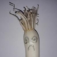 Frank Roos