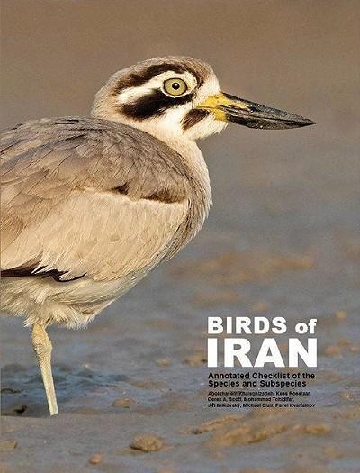 Dutch Birding - International journal on Palearctic birds - Dutch ...