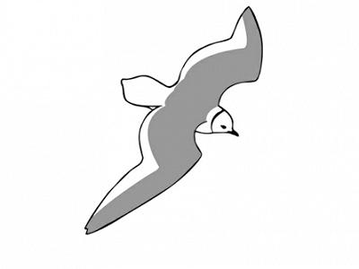 Dutch Birding sponsort trektellen.nl / Dutch Birding supports trektellen.nl